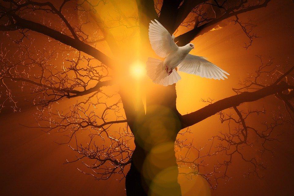 Church Christianity Pentecost Christian Holy Spirit